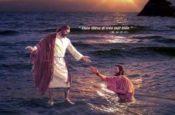 Ca tụng Chúa đi – Tv 145 (Slideshow)