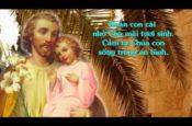 Cha Thánh Giuse ( Slideshow)