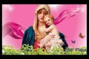 Chúa trong đời con (Slideshow)