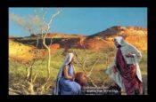 Dụ ngôn hạt cải (Slideshow)