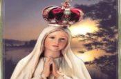 Đức Mẹ hồn xác lên trời (Slideshow)