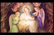 Hãy làm giàu trước mặt Chúa (Slideshow)