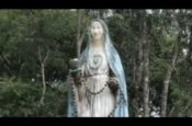Mẹ Măng Đen khổ đau (Video)