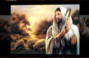 Thánh Tâm Chúa Giêsu (Karaoke)