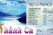 Album Bao La Tình Ngài Vol. 2