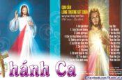 Album Con Cần Lòng Thương Xót Chúa