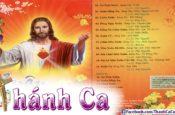 Album Phi Nguyễn Vol.11 – Xuân Hồng Ân
