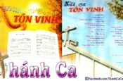 Album Sao Mai Vol.4 – Bài Ca Tôn Vinh