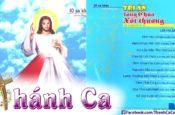 Album Tâm Ca Anna Thúy Mỹ Vol.1 – Tri Ân Lòng Chúa Xót Thương