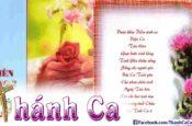 Album Thiên Cung Vol.2