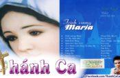 Album Trần Ngọc Vol.3 – Trinh Vương Maria