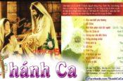 Album Xin Ngài Hãy Chọn Con Vol. 5