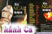 Album Xin Ngài Hãy Chọn Con Vol. 6