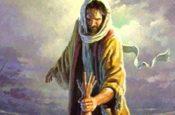 Theo Bước Chân Người