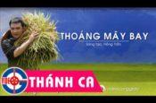 Thoáng Mây Bay