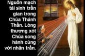 Tôn vinh Lòng Thương Xót Chúa