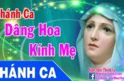 Tuyển Tập Thánh Ca Dâng Hoa Kính Đức Mẹ Maria 2016 Hay Nhất