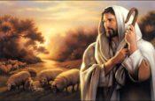 Đáp Ca: Lễ Thánh Tâm Chúa
