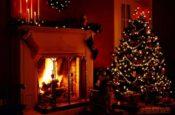 Mùa đông bên bếp lửa